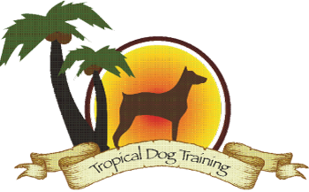 Tropical Dog Training