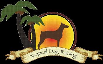Tropical Dog Training